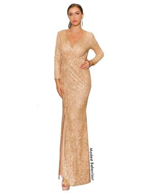 Glittery V Neck Evening Gown