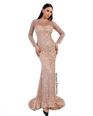 Long Sleeved Sweetheart Glittery Evening Gown