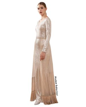 Royal Shimmery Evening Gown