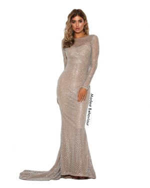 Net Glittered Evening Gown