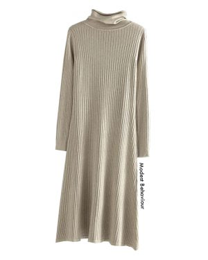 High Neck Ribbed Long Sweater Dress